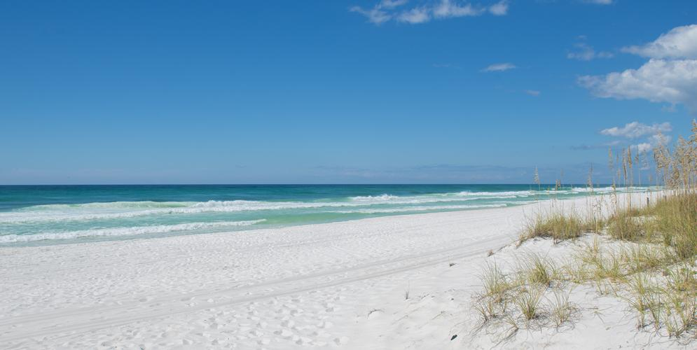 Pensacola's Gulf Islands National Seashore featured in New York Times!